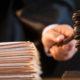 tânăr frătăuții vechi șase dosare penale