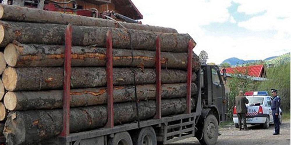 material-lemnos-transportat-ilegal-la-marginea