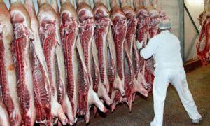 judetul-suceava-importat-peste-2000-tone-de-carne-primele-opt-luni-din-2017