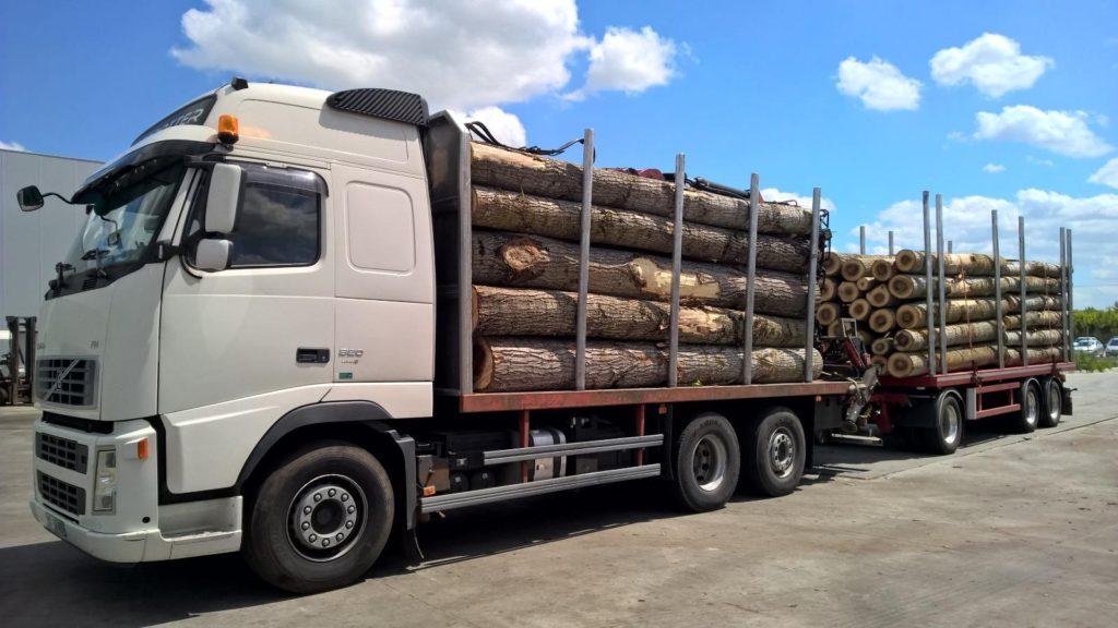 camion-cu-lemne