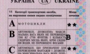 permis-fals-ucrainean