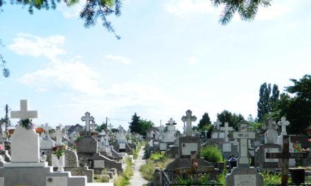 peste-5-500-de-suceveni-au-murit-de-la-inceputul-anului