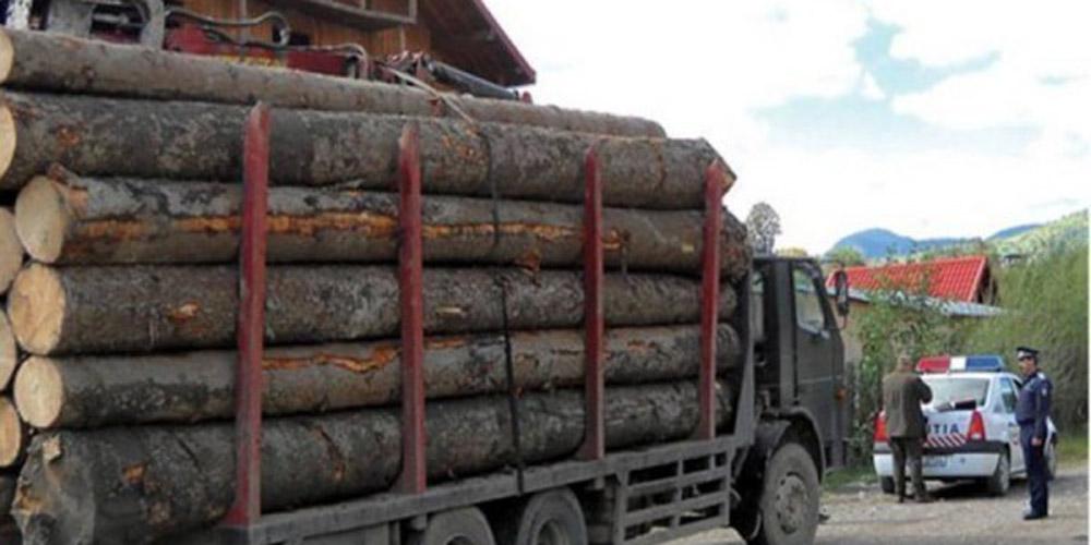 doi-soferi-amendati-cu-cate-5-000-lei-si-material-lemnos-confiscat