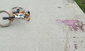 tragedie-intr-o-familie-matusa-si-a-accidentat-mortal-nepotul-de-4-ani