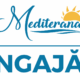 ANGAJARE-MEDITERANA